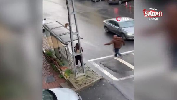 İstanbul'da çevreye dehşet saçan başıboş köpekler kamerada | Video