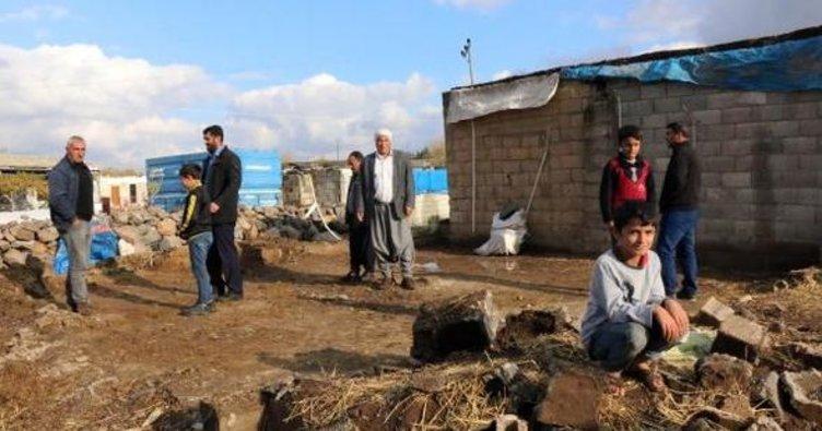 Şanlıurfa'da ahır çöktü; 2 inek telef oldu