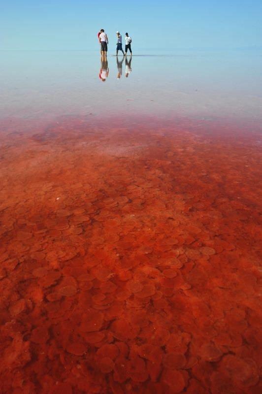 Tuz Gölü kızıla döndü