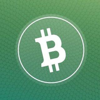 Bitcoin'den 1 yılda 1 milyar dolar kazandı!