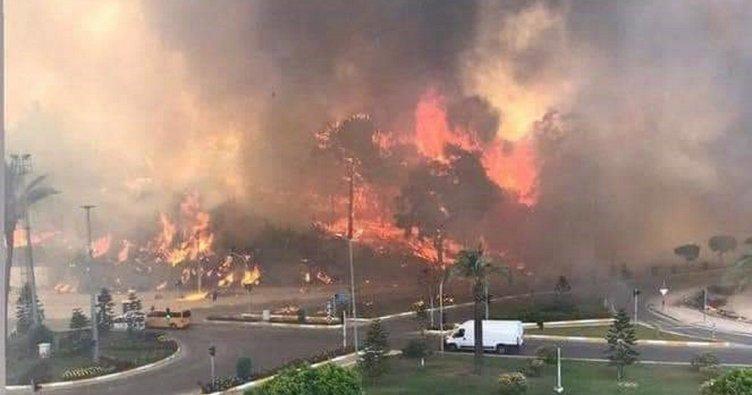 Son dakika: Antalya Manavgat'ta yangın neden çıktı? Sabotaj mı kaza mı?