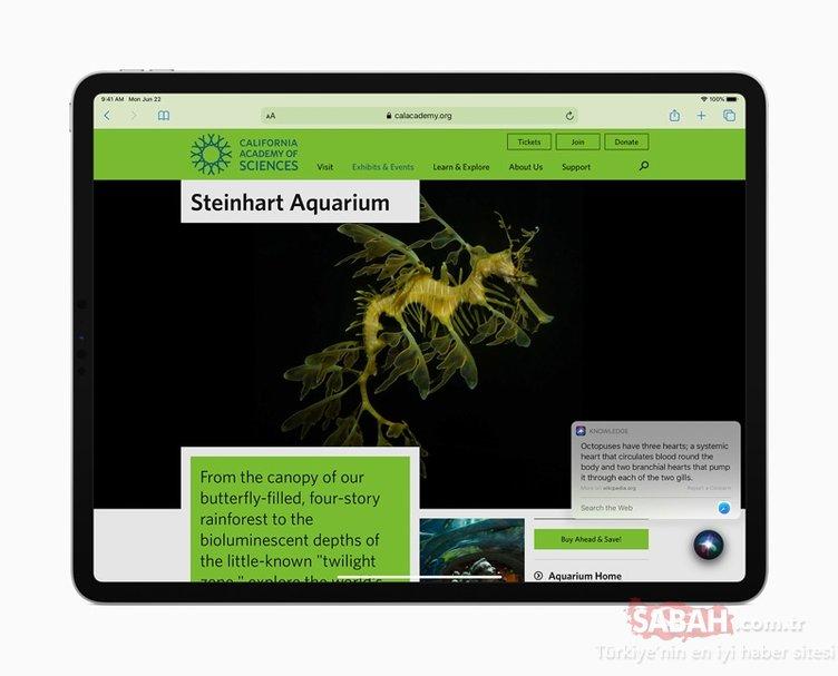 iPadOS 14'ün özellikleri nedir? iPad'lere bakın hangi yenilikler geliyor...