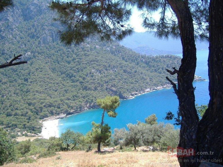 Türkiye'de kamp yapmak için en uygun 10 yer