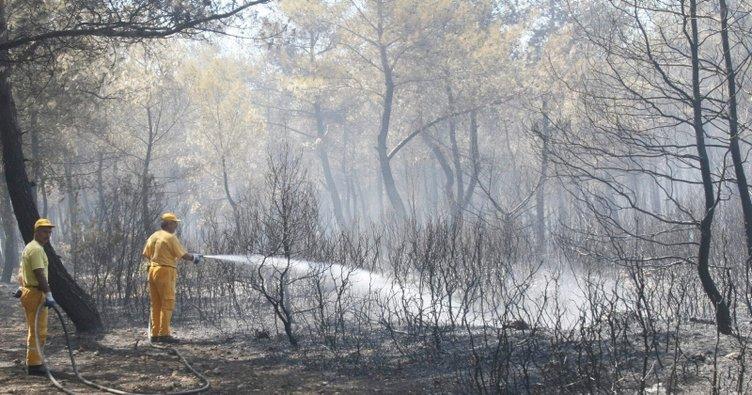 Buca'daki yangın kontrol altında