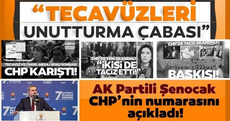 Bayram Şenocak: CHP, taciz ve tecavüz vakalarını unutturmak için gündem değiştirmeye çalışıyor
