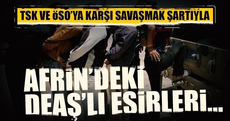 Son dakika haberi... PYD/PKK, Afrin'deki DEAŞ'lıları TSK'yla savaşmaları için serbest bıraktı