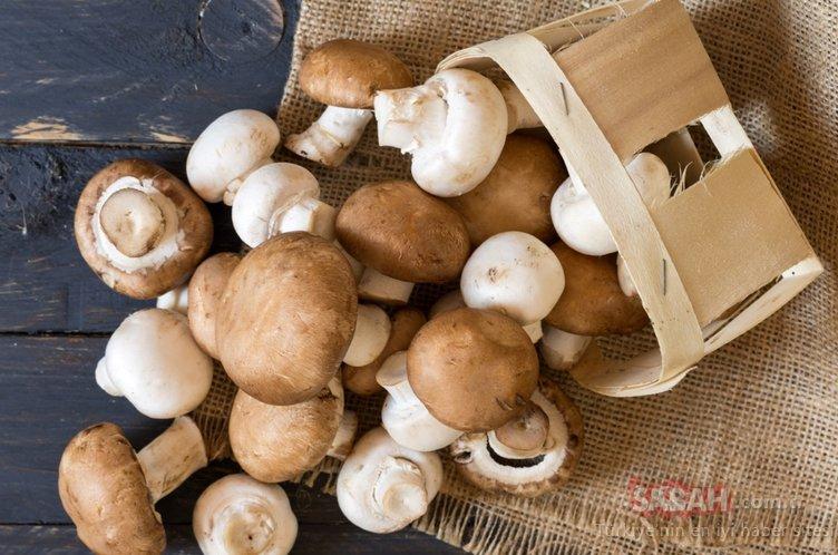 Sonbaharda sağlık veren 6 önemli besin