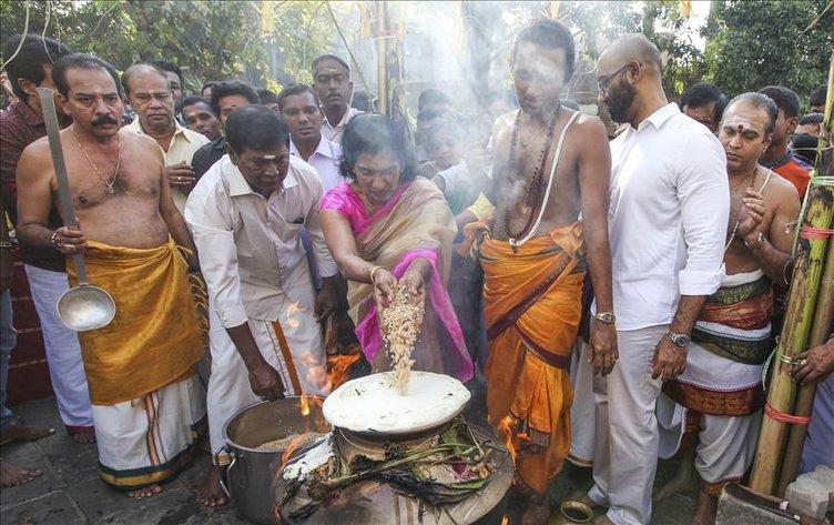 Thai Pongal Hindu Festivali Sri Lanka