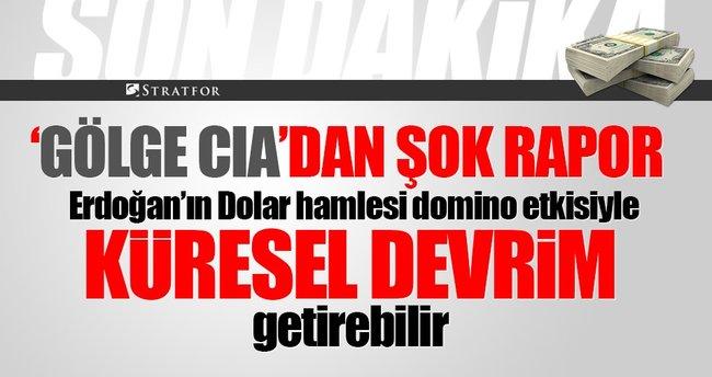Stratfor: Erdoğan'ın küresel sistemi değiştiriyor! Dolar hamlesi domino etkisi yaparsa...