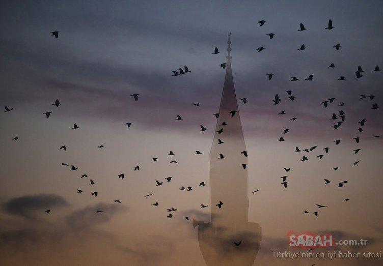 Kütahya'da kargaların gökyüzündeki dansı görenleri şaşkına çevirdi