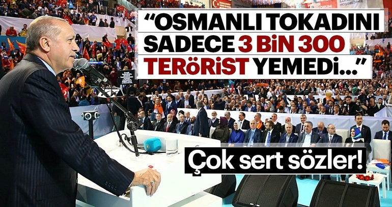 Cumhurbaşkanı Erdoğan: Osmanlı tokadını sadece 3 bin 300 terörist yemedi...