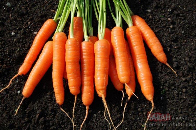 Saçı dökülen bu besinleri bol bol yesin! İşte saç dökülmesini önleyen süper besinler!