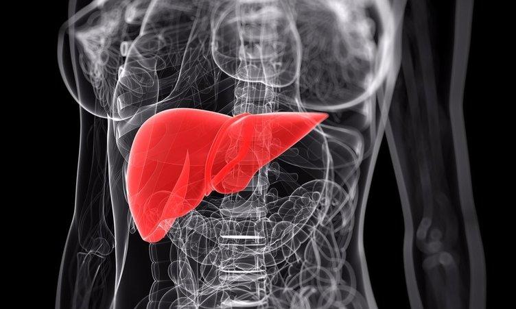 Karaciğerinizdeki o sorunu ortadan kaldırıyor