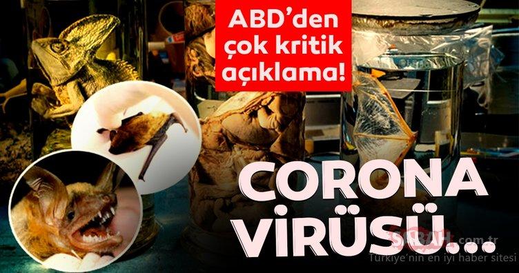 SON DAKİKA HABERİ: ABD'den corona virüs salgını ile ilgili çok kritik açıklama! Corona virüsü…