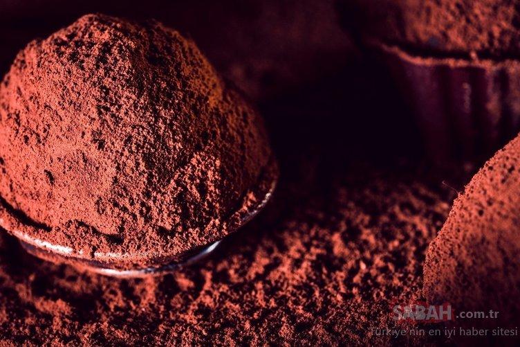 Binlerce yıl önce ilaç olarak kullanılıyordu! Bu besin hastalıklara kalkan oluyor...