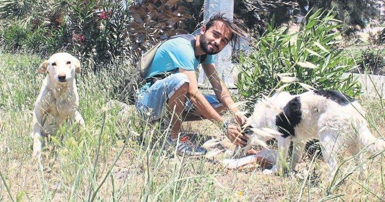 Köpekleri besleyen gençlere saldırdılar