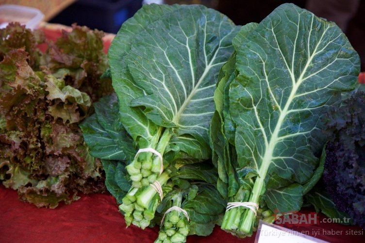 Bu besin sadece iki ayda kanser riskini azaltıyor!