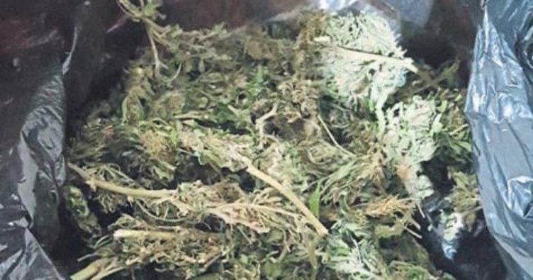 Ege'de uyuşturucu baskını: 109 gözaltı