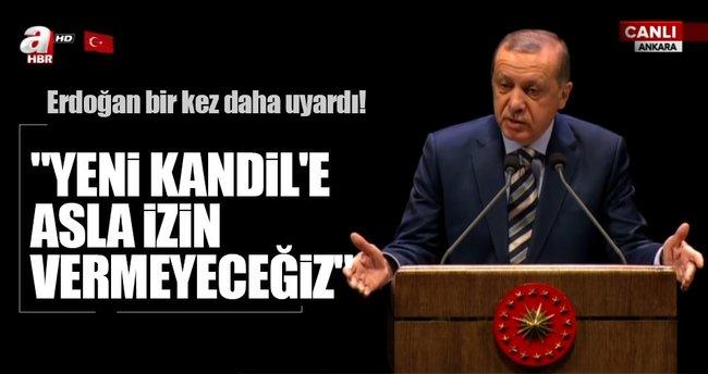 Cumhurbaşkanı Erdoğan: Yanımda milletimden başka kimseyi bulamadım