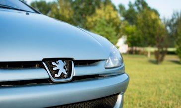 Bu modelden Peugeot'da bile yok!