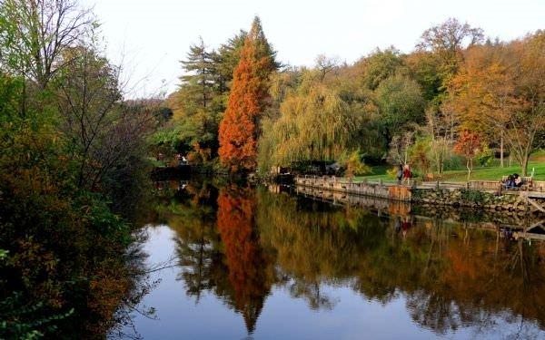 Atatürk Arboretumu'nda sonbahar