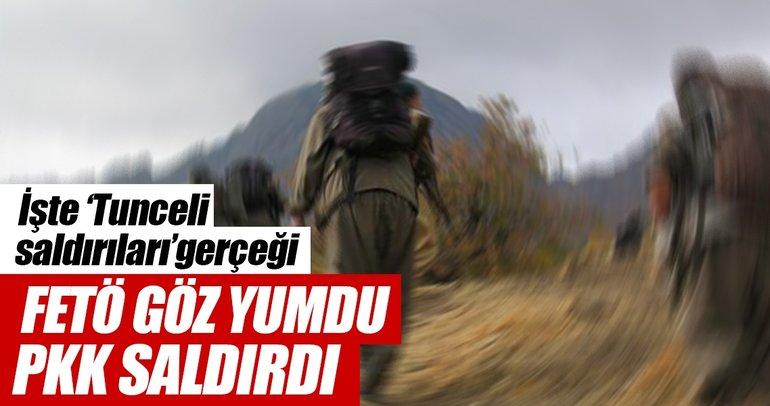 FETÖ göz yumdu, PKK saldırdı