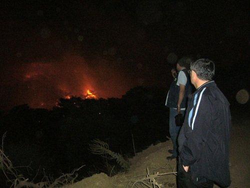 Balıkesir Edremit'te yangın