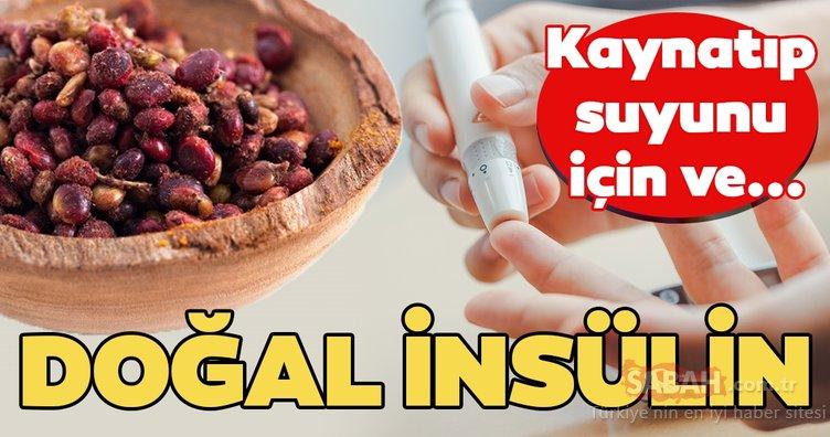 Bu besin doğal insülin görevi görüyor! İşte kan şekerini düzenleyen besin...