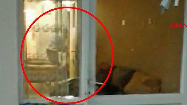 Son dakika haberi: Türkiye bu skandal görüntüleri konuşuyor! Komşuların gizli çekimi ikisi kız biri erkek... | Video