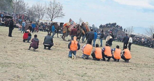 Kemalpaşa'da develer güreşti