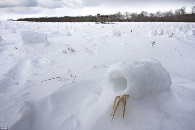 Böyle kar yağışı görmediniz!
