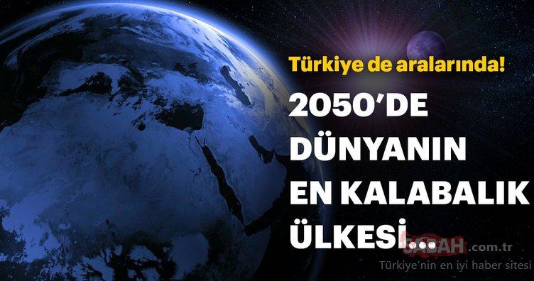 2050'de en fazla nüfusa sahip olacak ülkeler