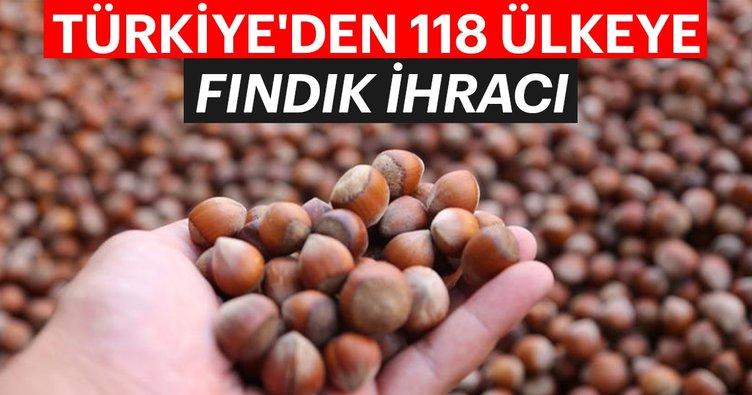 Türkiye'den 118 ülkeye fındık ihracı