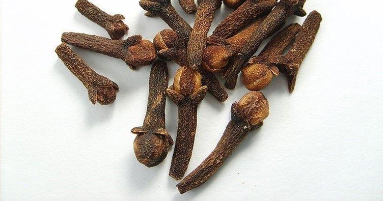 Karanfilin faydaları nelerdir? Mucize bitki karanfil hangi hastalıklara iyi gelir?