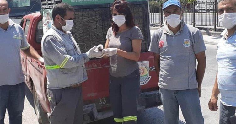 Çöpe atılan yavru kediyi temizlik işçileri buldu