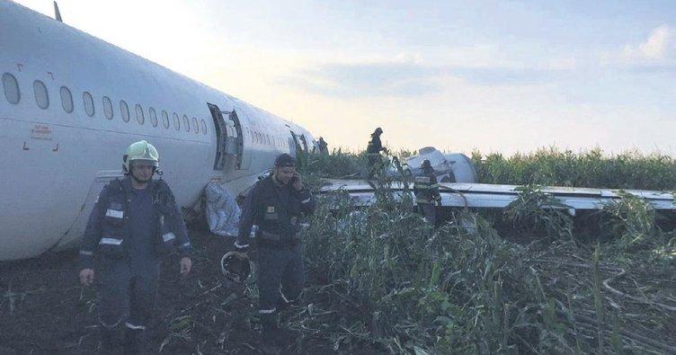 Martı sürüsüne çarpan yolcu uçağı tarlaya indi