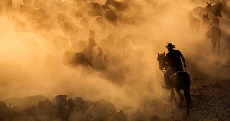 Bir yabancının gözünden güzel atlar diyarı:...