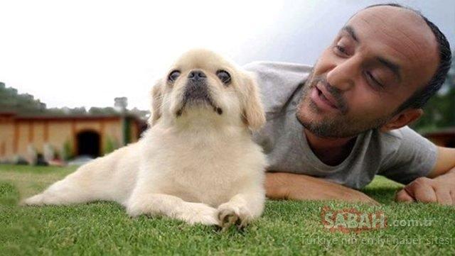 Acun Ilıcalı köpeğini kaybeden Ersin Korkut'u teselli etmenin yolunu buldu! Acun Ilıcalı Ersin Korkut'a sürprizini canlı yayında duyurdu...