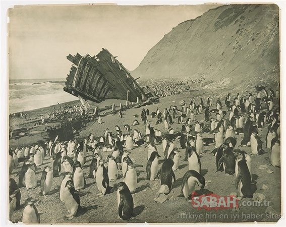 Tarihin en etkileyici ve en acı fotoğrafları