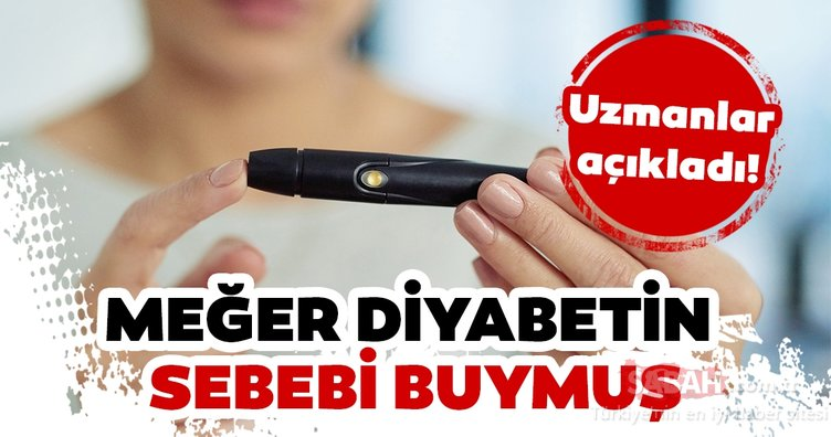 Diyabetin sebebi ortaya çıktı! İşte uzmanların diyabet ile ilgili açıklaması...