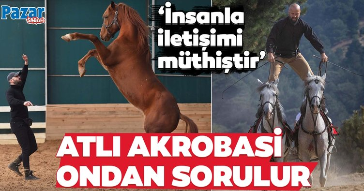 At insanı ehlileştirir!