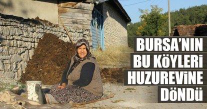 Bursa'nın bu köyleri huzurevine döndü