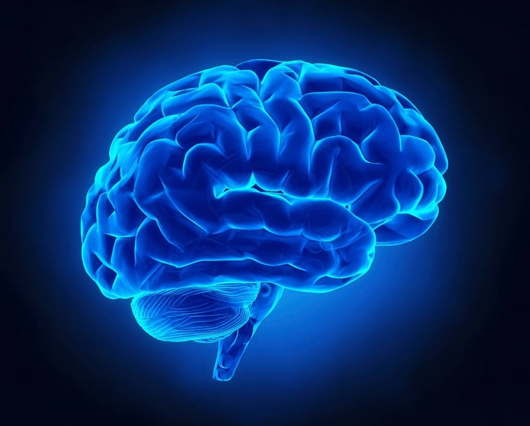 7 günde IQ'nuzu artırabilirsiniz