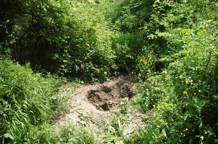 Piknik alanında toprağa gömülü insan iskeleti bulundu