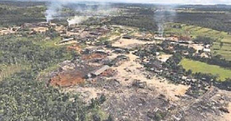 Amazon ormanları hızla yok ediliyor