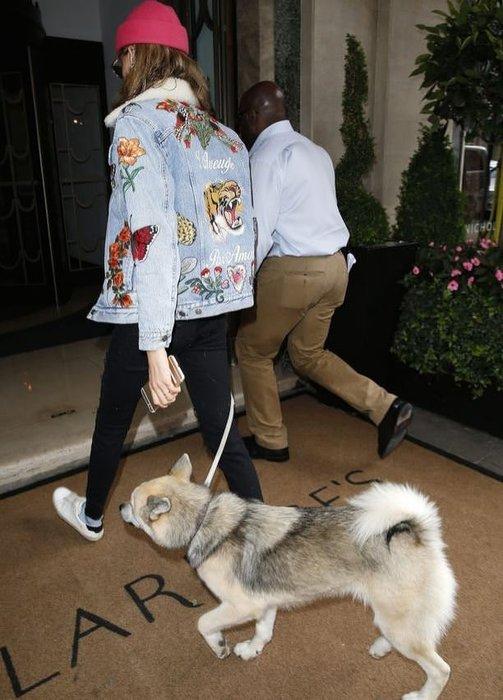 Köpeğine biber gazı tasması takan ünlü modele tepki yağıyor