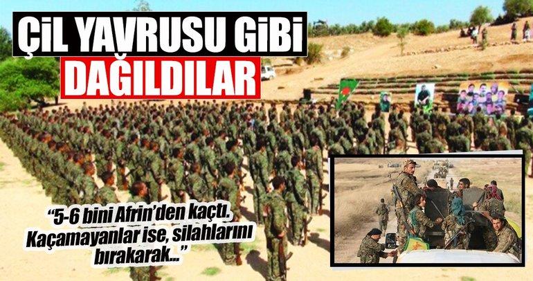 Çil yavrusu gibi dağılan YPG/PKK'lı teröristlerden kaçamayanlar hala Afrin'de!