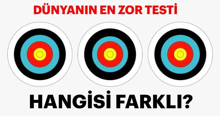 Dünyanın en zor testi! Hangisi farklı