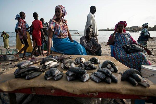 Dakar'da balık pazarı