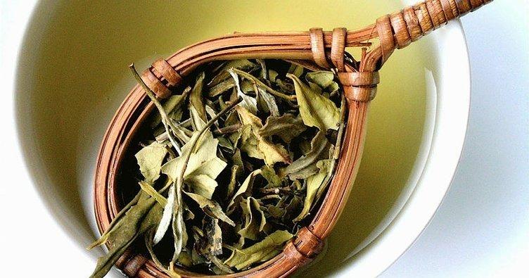 Beyaz çayın faydaları nelerdir? İşte mucizevi içeçek beyaz çayın faydaları!